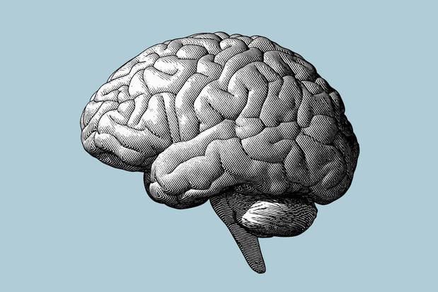 Comment un voyage dans l'espace modifie notre cerveau