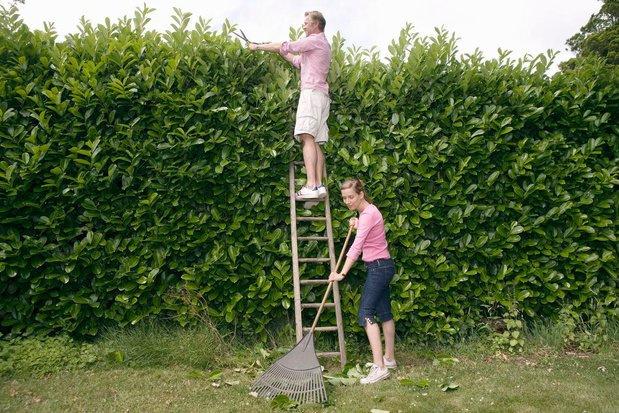 À partir du 1er septembre, le jardin du voisin sera aussi un peu le votre