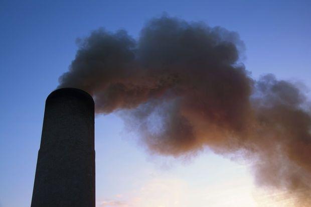 """""""La transition vers une économie neutre en carbone pourrait créer 1,2 million d'emplois"""""""