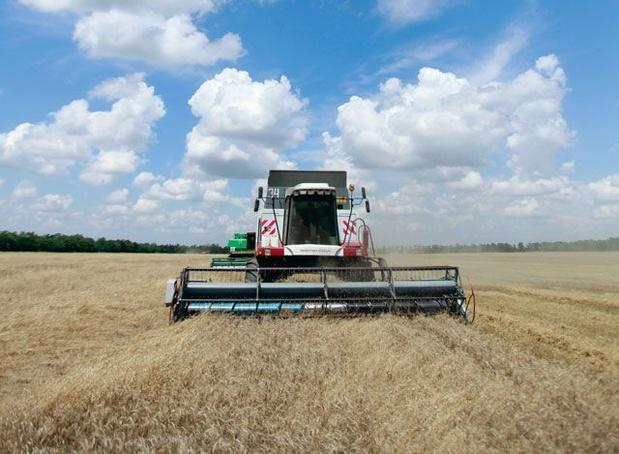 Europese wet tegen pesticiden afgezwakt: 'Commissie kiest kant van industrie, niet van volksgezondheid'