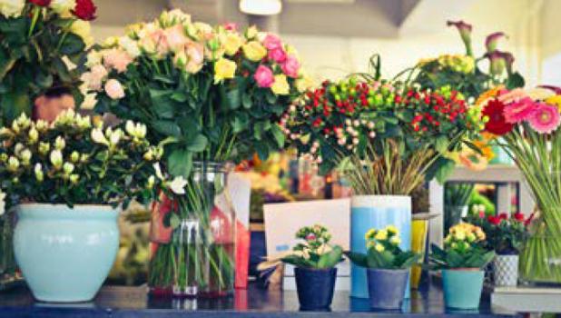 Brussels Flowers, zeg het met bloemen!