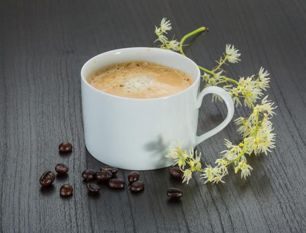 Exclusief lezersvoordeel: Grand Maestro Italiano koffie met uitzonderlijke korting!