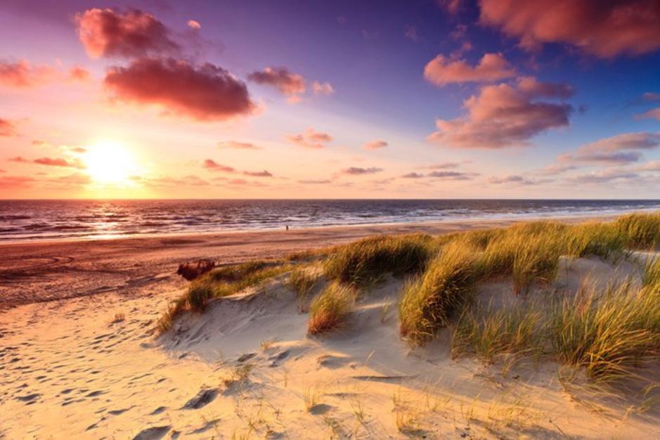Les 12 plus belles réserves naturelles des Pays-Bas