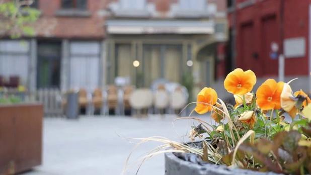 Covid: réouverture des terrasses aux Pays-Bas