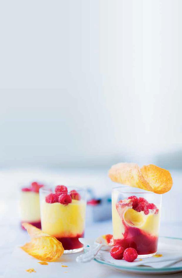 Panna cotta met rood fruit en krokant koekje