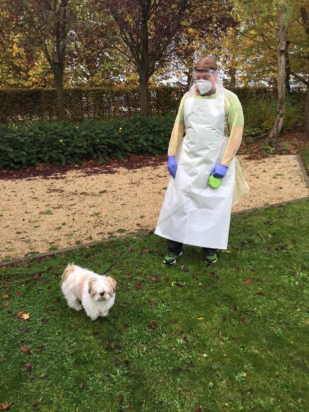 Hondje Ajko houdt besmet baasje gezelschap op covidafdeling van WZC Sint-Jozef