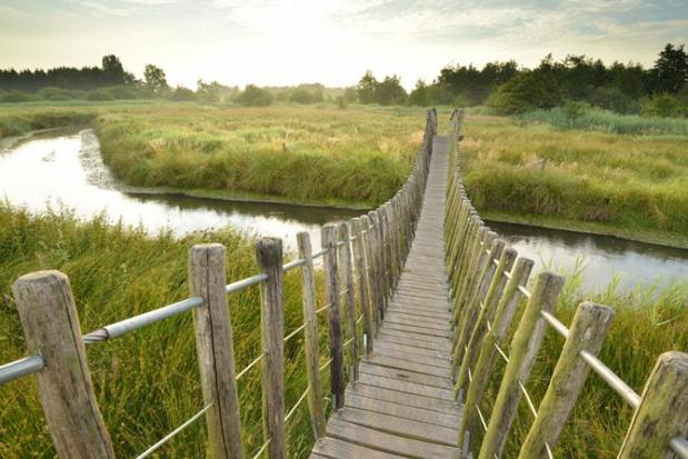 Plus de 600 nouveaux hectares de réserves naturelles en Flandre