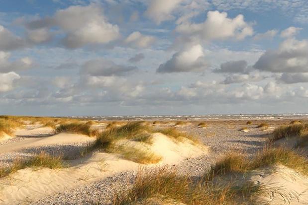 Vier West-Vlaamse natuurgebieden krijgen extra subsidies van minister Demir