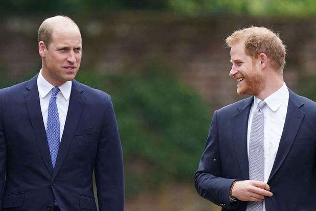 William et Harry réconciliés pour rendre hommage à leur mère Lady Di