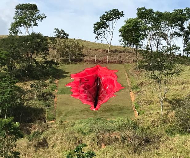 Une vulve de 33 mètres sculptées dans une colline fait débat au Brésil
