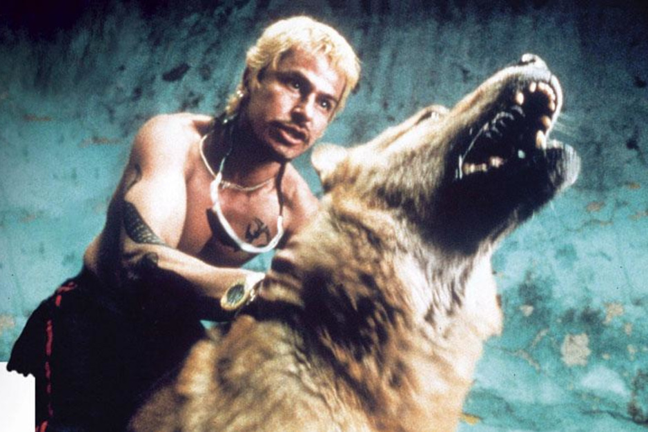 'Amores perros': de oerknal van de moderne Mexicaanse cinema