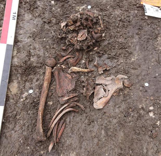 Archeologen vinden lijk en dobbelstenen bij opgravingen in Brugge