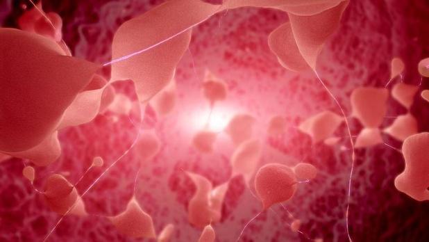 Genetica en de ziekte van Parkinson