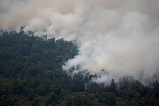 Indonesië geteisterd door ergste bosbrandseizoen in jaren