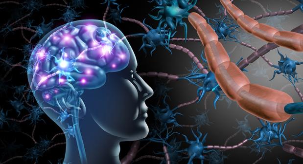 Une recherche approfondie est cruciale pour l'avenir des patients atteints de SEP