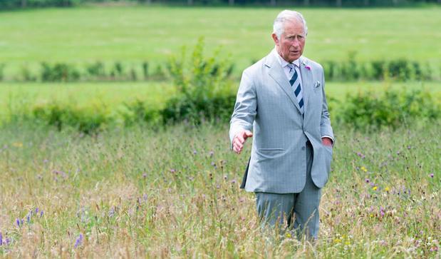 Pour le prince Charles, remettre la nature au centre de tout est la condition pour éviter le désastre