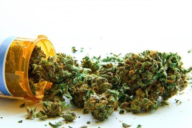 Bientôt un Bureau du cannabis