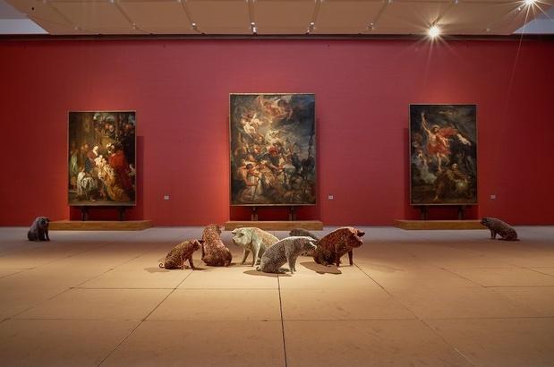 Wim Delvoye: de meester van het trompe-l'oeil