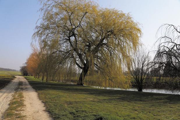 Balades: Trois boucles au fil de l'eau pour découvrir le Brabant wallon (circuits)