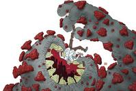 Que pourrait-il nous arriver de pire que le coronavirus?