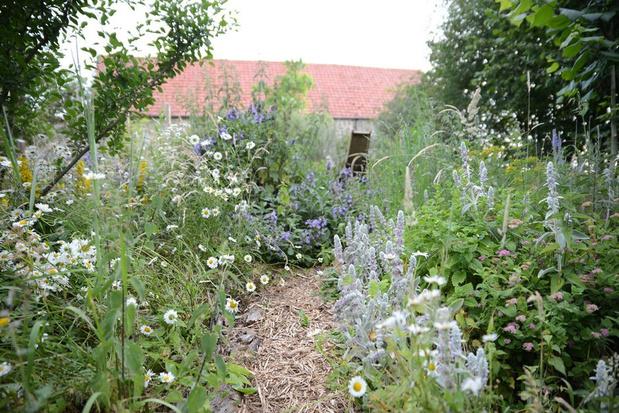 Un jardinier paresseux pour un jardin heureux