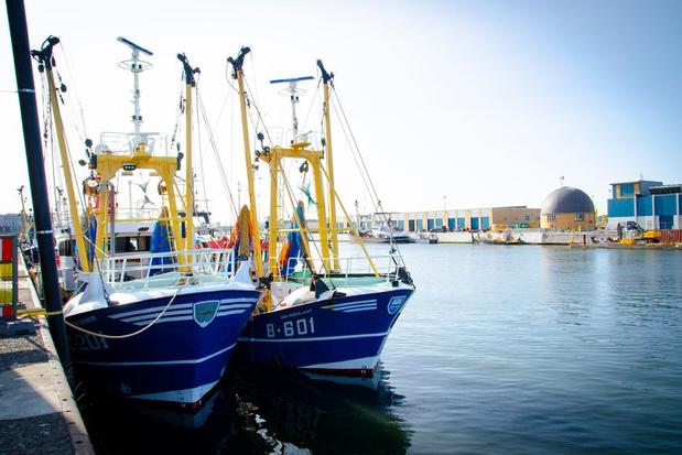 """Ce qui peut changer pour les pêcheurs en cas de Brexit """"no-deal"""""""