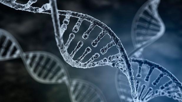 Leuvense technologie laat ziekenhuizen toe om snel een volledige genoomanalyse uit te voeren