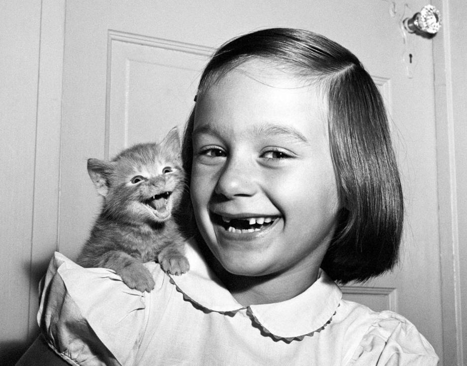 In beeld: de ontwapenende kattenfoto's van Walter Chandoha