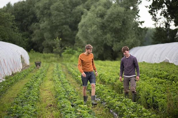 'De korte keten kan een cruciale rol spelen in de transitie naar een ander voedselsysteem'