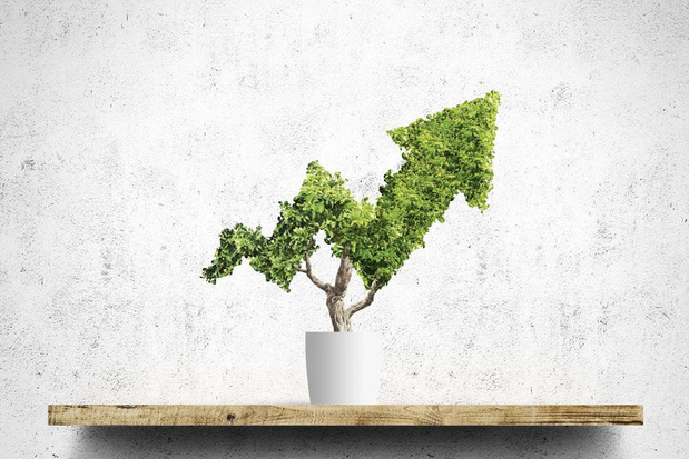 De koopjesjagers van de beurs blijven geloven in waardebeleggen
