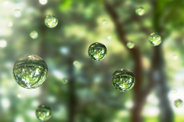 Het Cheerios-effect: waterdruppels dansen als planeten rond elkaar