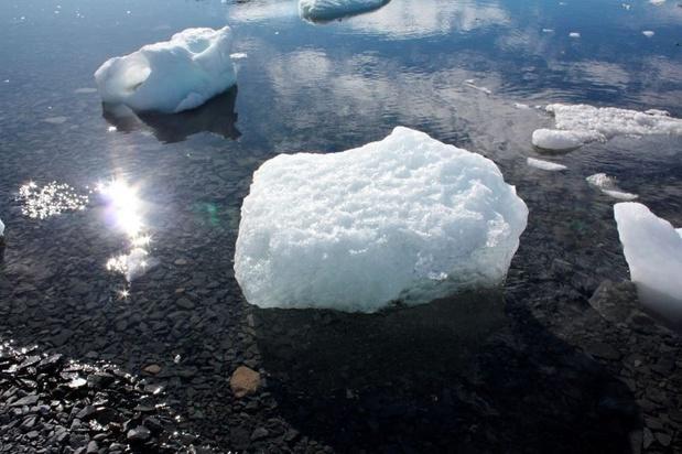 """""""Alarmant"""": la péninsule Antarctique vit son année la plus chaude depuis plus de 30 ans"""