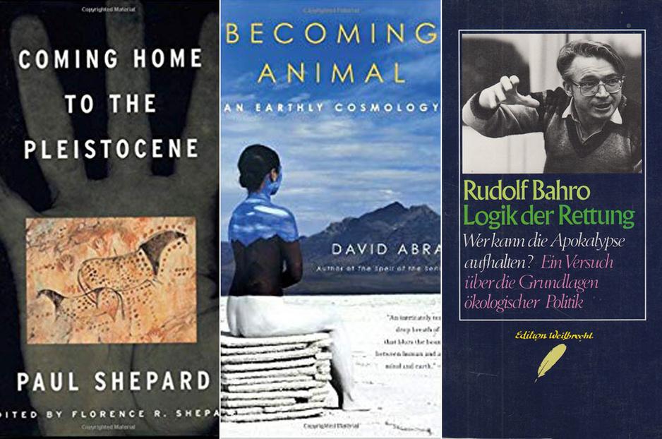 De drie beste boeken over de ecologische crisis volgens professor Ullrich Melle