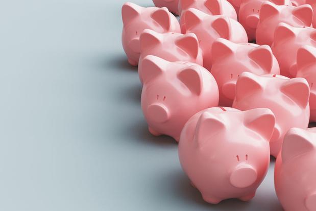 'Het hele subsidiebeleid moet op de schop'