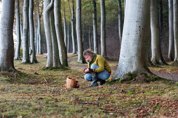'België heeft dringend meer voedselbossen nodig'
