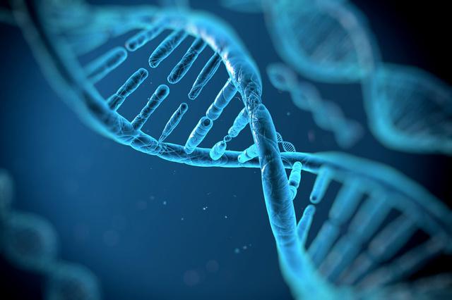 'België moet meer doen om commerciële DNA-tests aan te pakken'