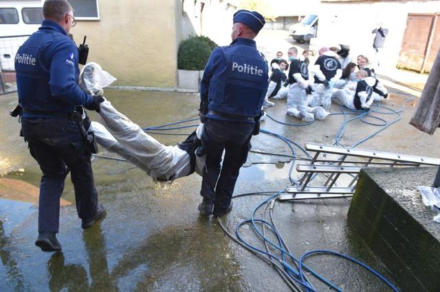 Inval in eendenbedrijf zorgt dat bijna helft van dieren sterft