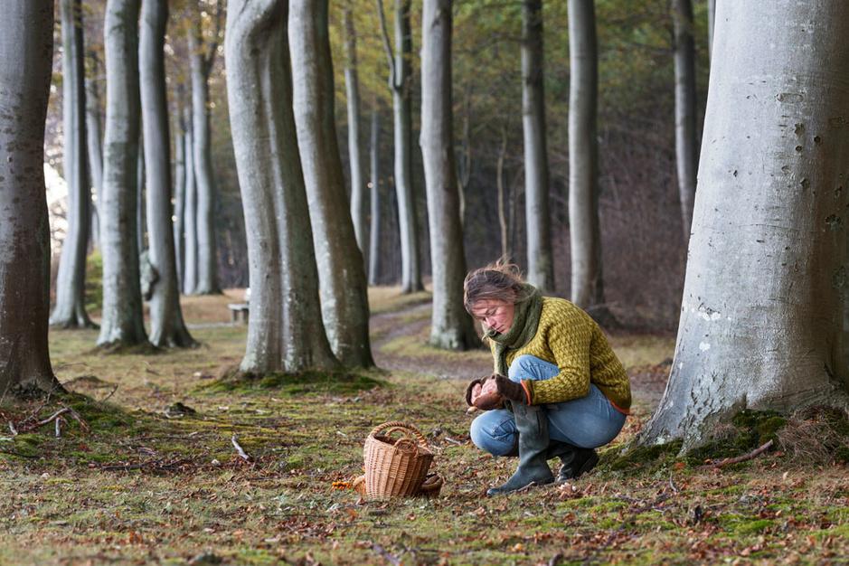 De opkomst van het voedselbos: plant uw eigen uiensoepboom