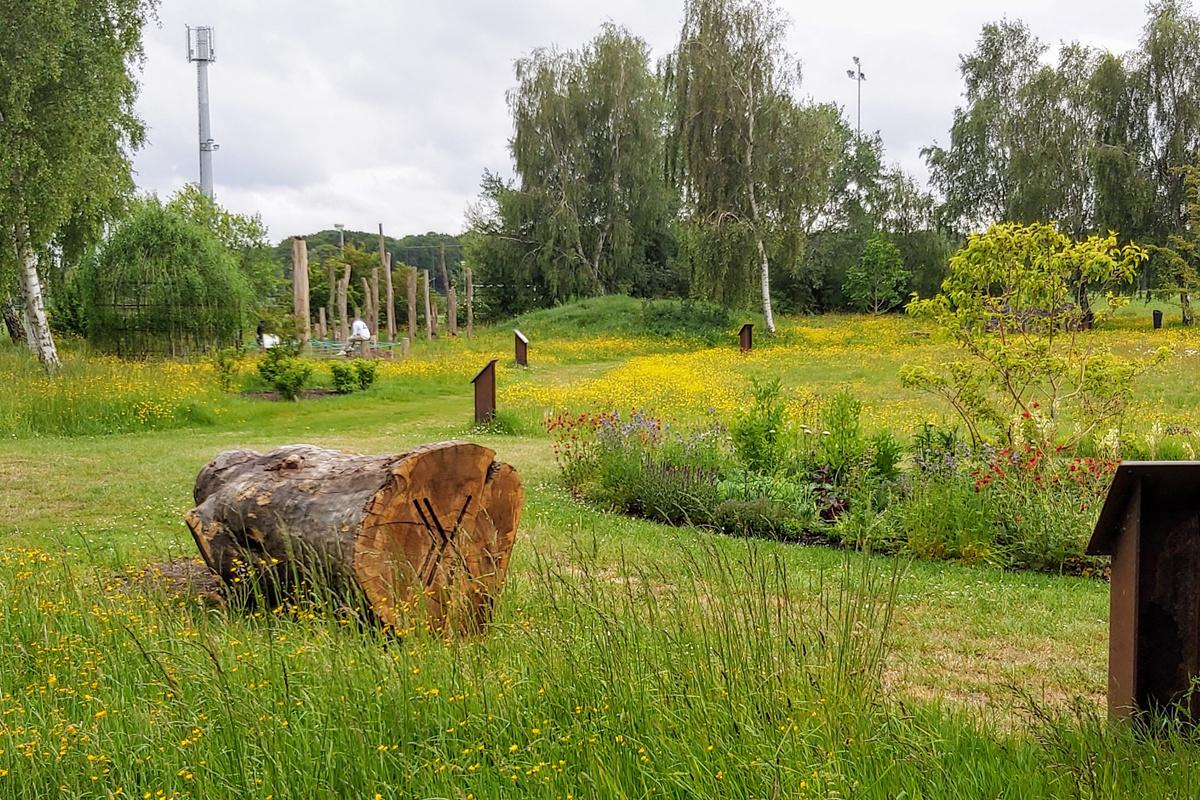 De bijentuin in Damme inspireert bezoekers om hun tuin bij- en natuurvriendelijk in te richten, hoe groot of klein die ook is., .