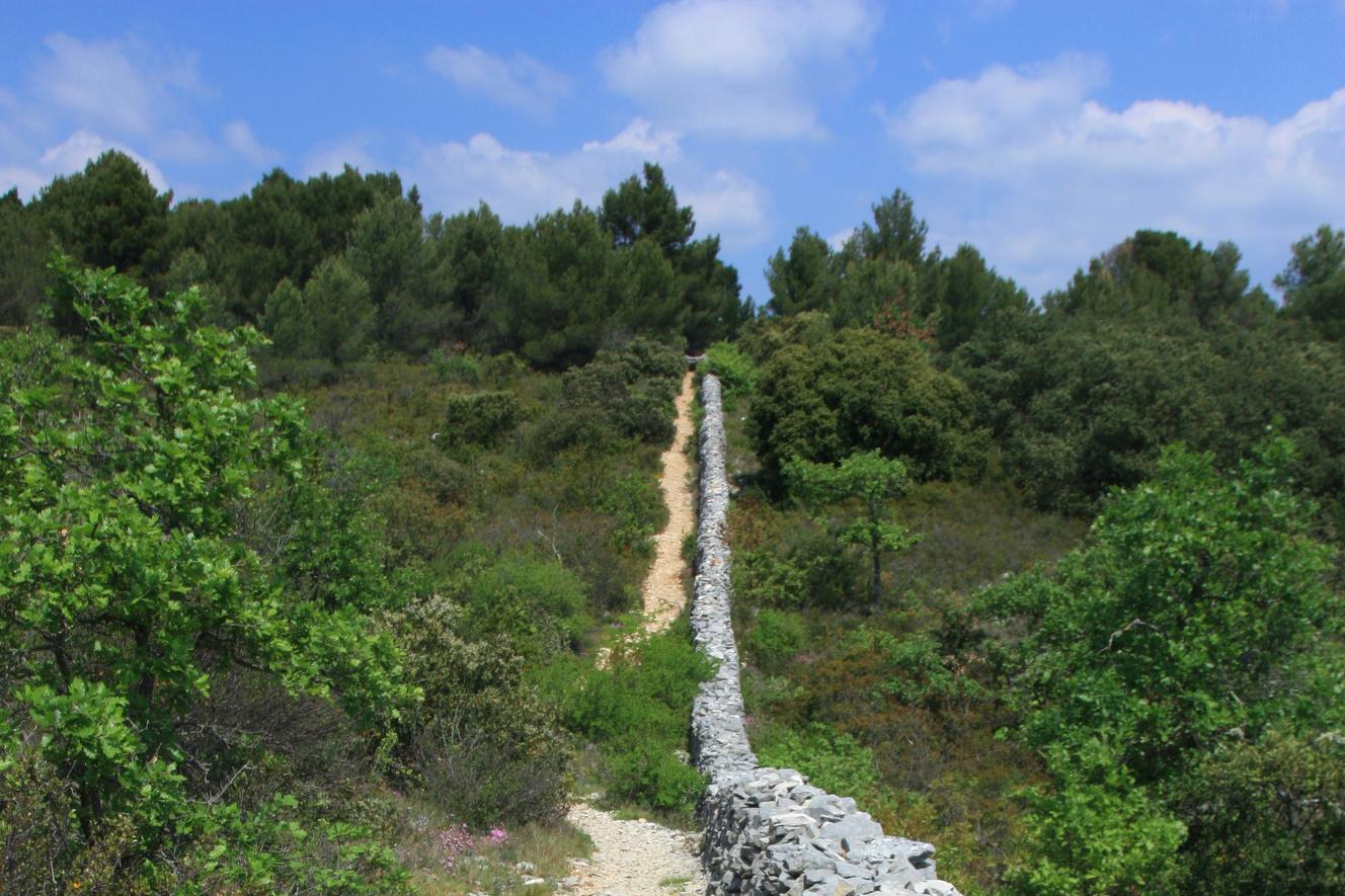Vaucluse Provence