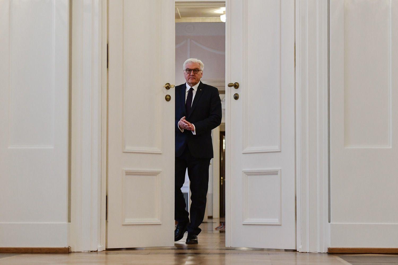 Frank-Walter Steinmeier, AFP/John MacDougall