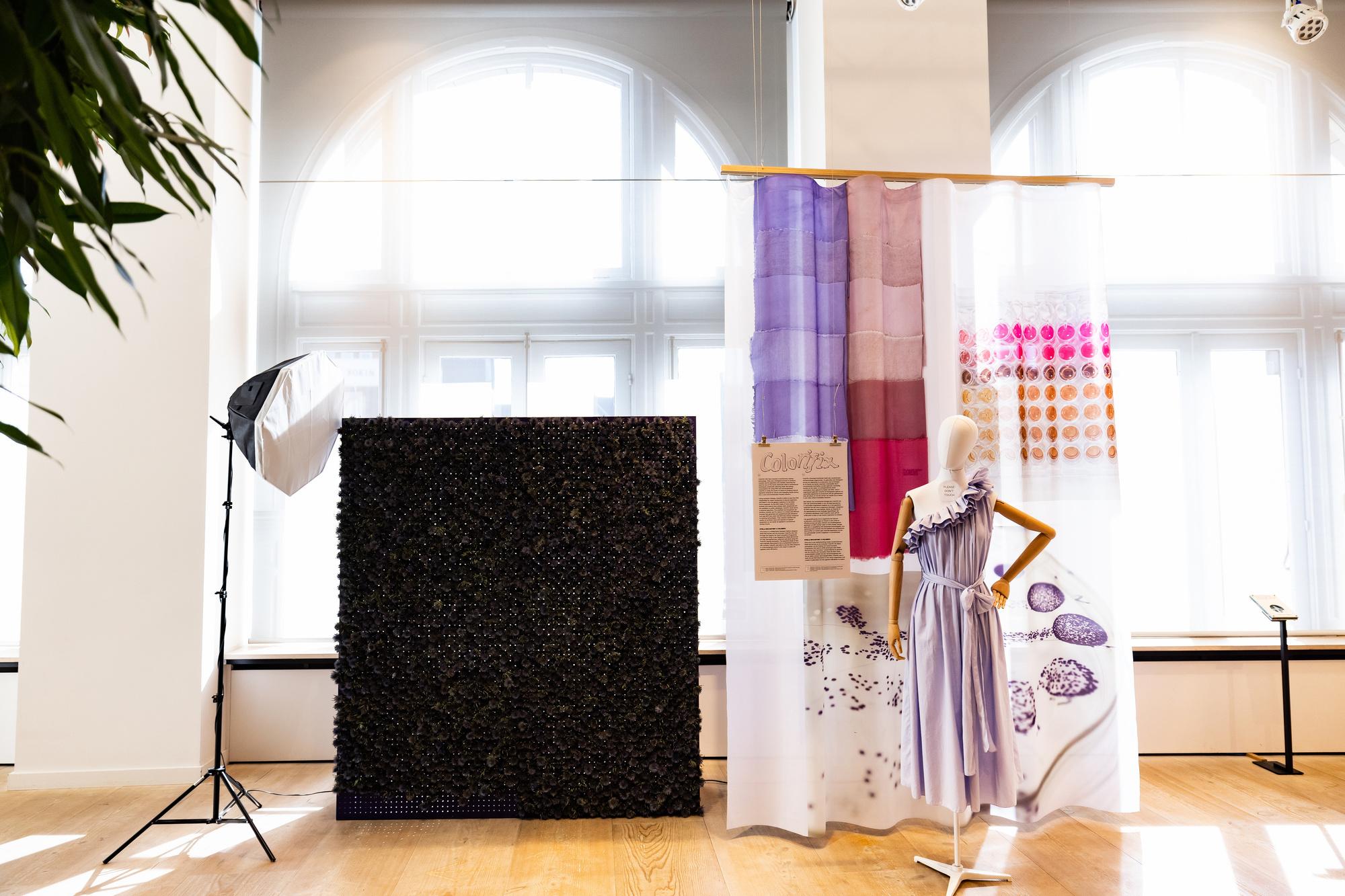 De jurk van Stella McCartney in samenwerking met Colorifix, Alina Krasieva