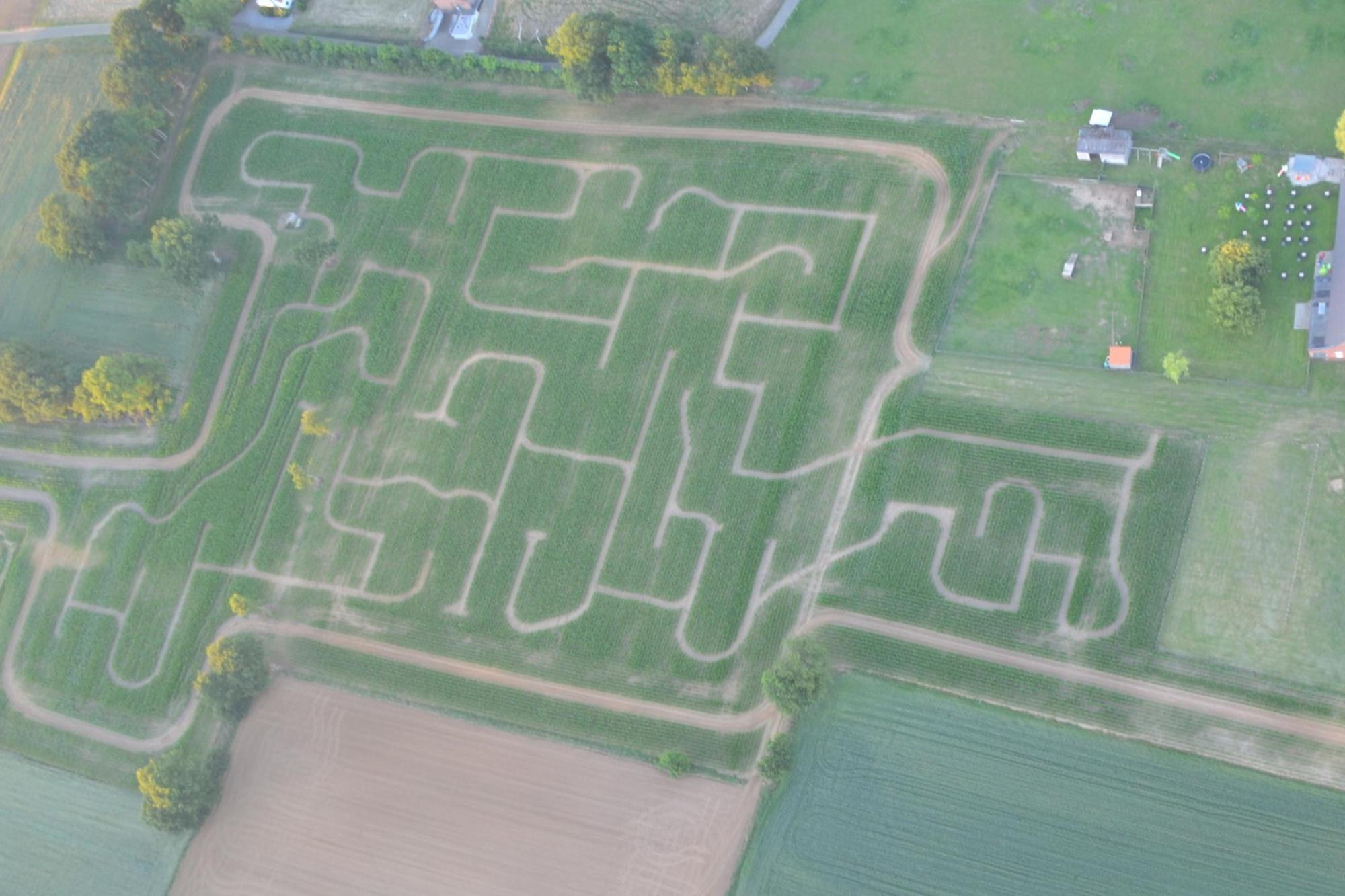 Het fietspad loopt rond het maïsdoolhof, Visit Limburg