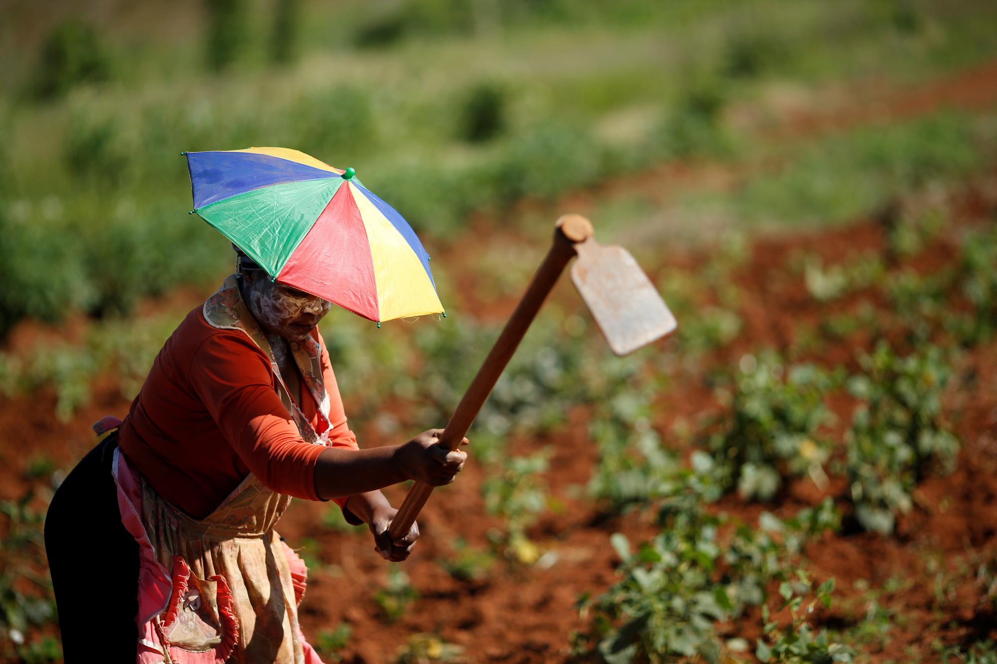 'Een dokter heb je maar af en toe nodig, maar een boer drie keer daags', Getty