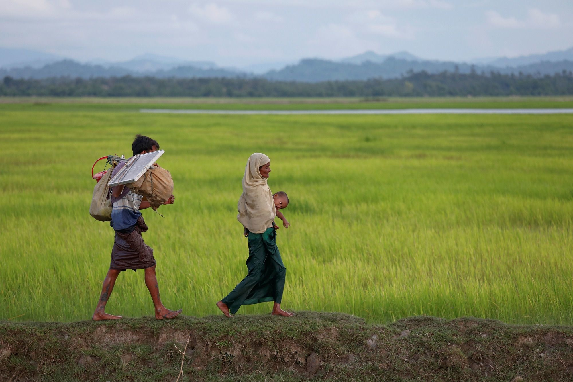 Rohingya refugees who fled from Myanmar make their way through the rice field after crossing the border in Palang Khali, Bangladesh October 9, 2017. REUTERS/Damir Sagolj - RC13A1FAEBD0, REUTERS