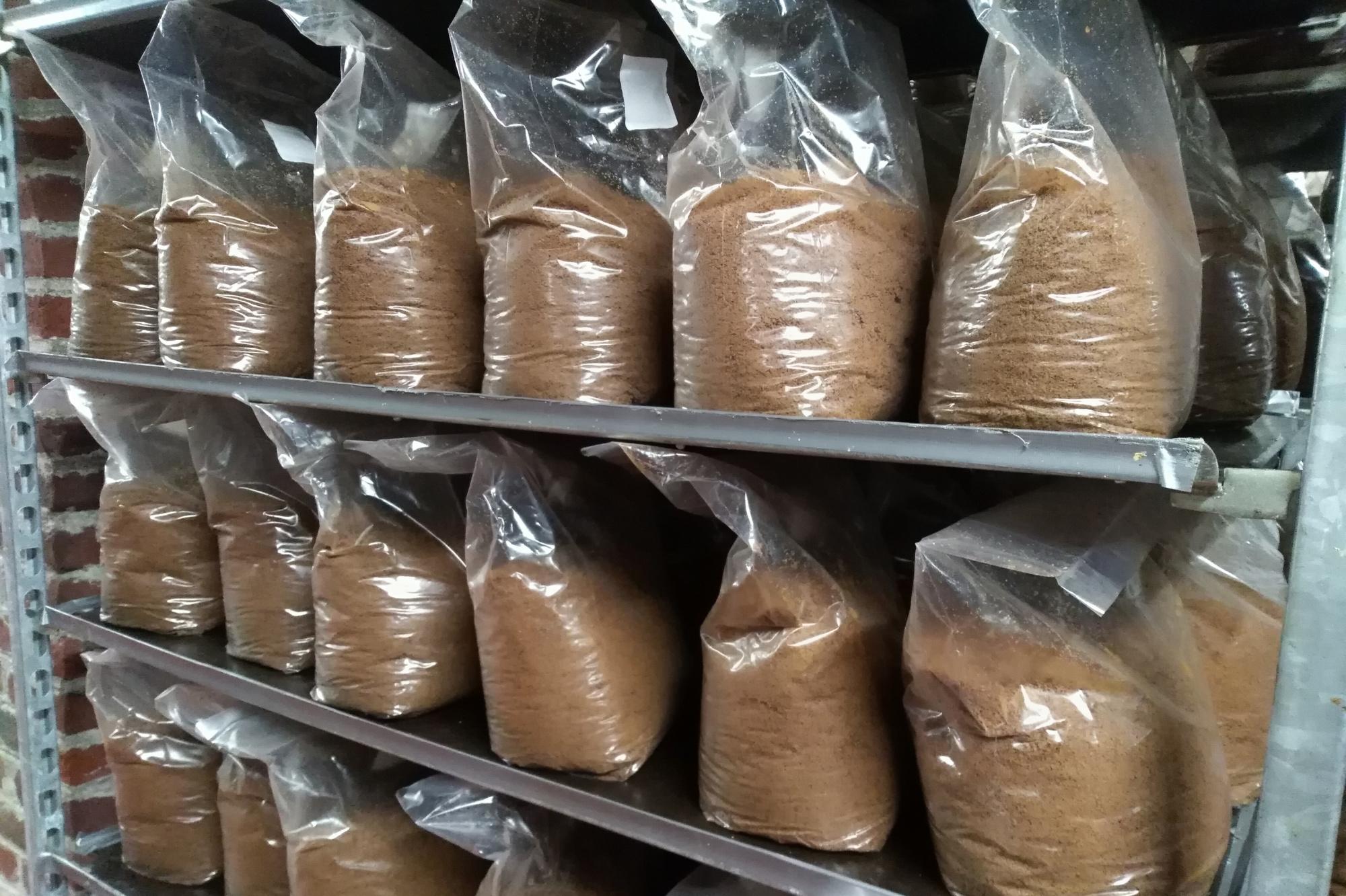 Le mycélium des shiitakés va se propager à travers le mélange de céréales pendant deux à trois mois., Stagiaire Le Vif