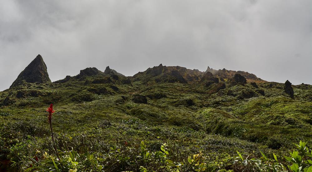 Parc national de la Guadeloupe, Kevin Charpentier, Wikicommons