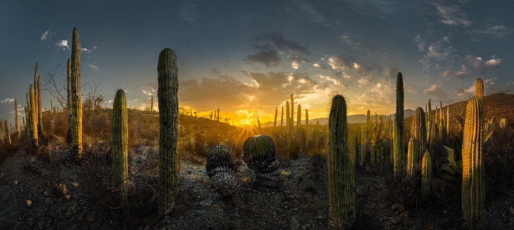 ., Luis Lyons, The 10th EPSON International Pano Awards via photopublicity.com