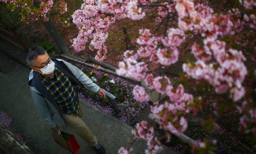 A Kyoto. , reuters