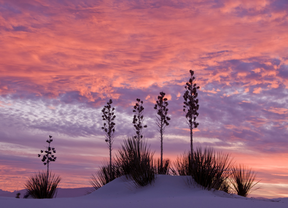 White Sands National Park, Getty Images